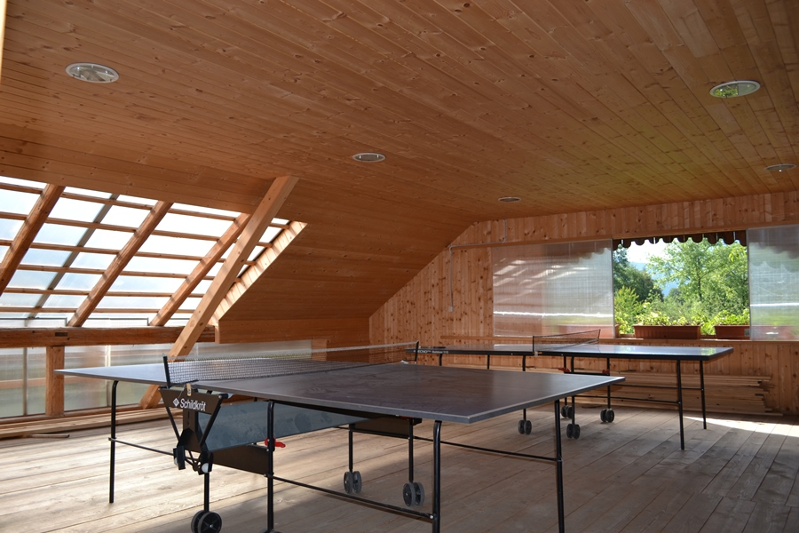Sport center Prodnik Table tennis